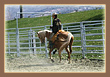 photogallery4-horseriding