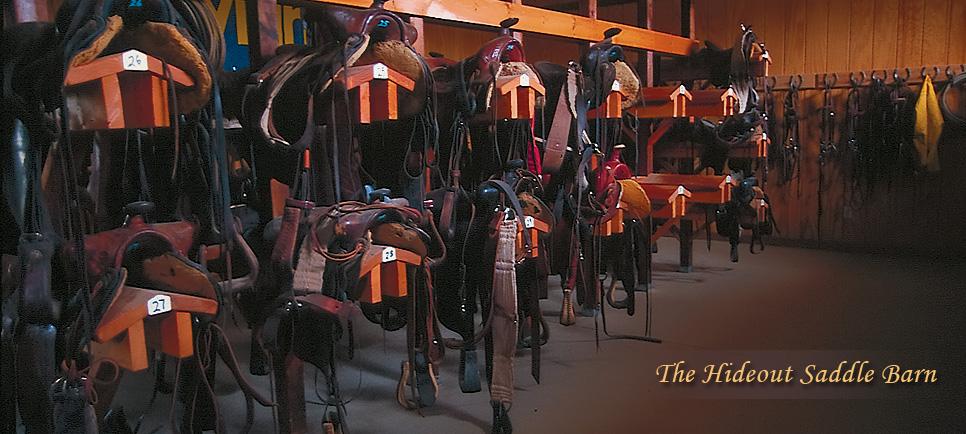 Saddle-Barn